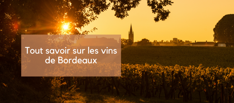 Tout savoir sur les vins de Bordeaux